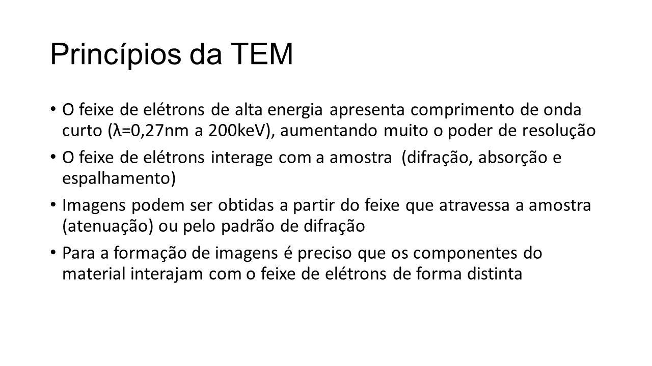 Princípios da TEM • O feixe de elétrons de alta energia apresenta comprimento de onda curto (λ=0,27nm a 200keV), aumentando muito o poder de resolução • O feixe de elétrons interage com a amostra (difração, absorção e espalhamento) • Imagens podem ser obtidas a partir do feixe que atravessa a amostra (atenuação) ou pelo padrão de difração • Para a formação de imagens é preciso que os componentes do material interajam com o feixe de elétrons de forma distinta