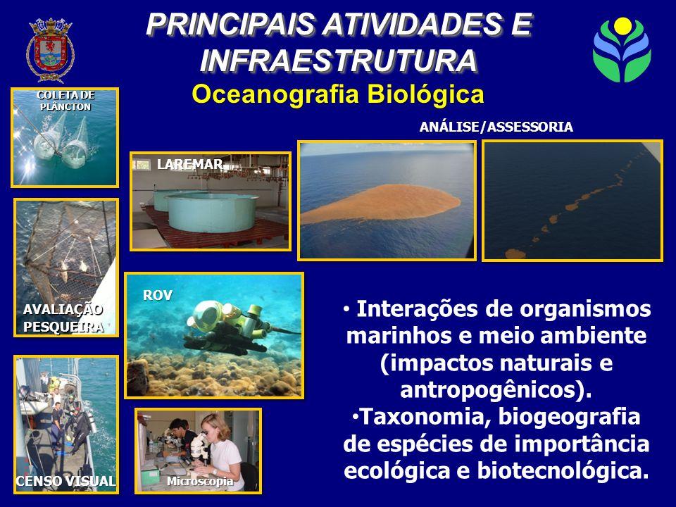 Oceanografia Biológica COLETA DE PLÂNCTON AVALIAÇÃOPESQUEIRA CENSO VISUAL ANÁLISE/ASSESSORIA • Interações de organismos marinhos e meio ambiente (impactos naturais e antropogênicos).