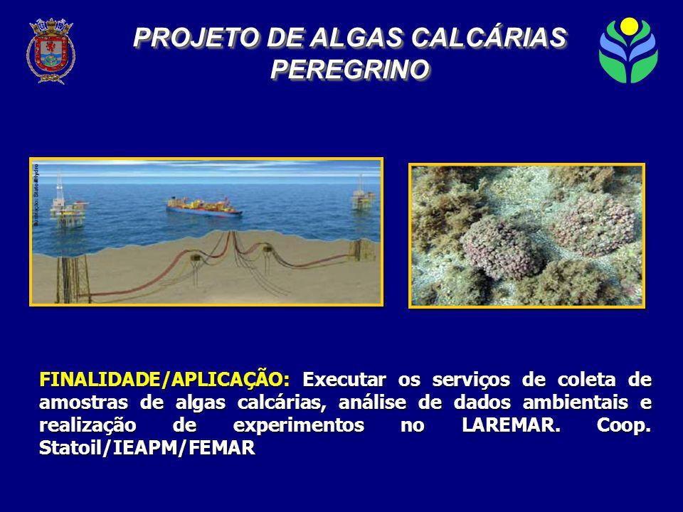 FINALIDADE/APLICAÇÃO: Executar os serviços de coleta de amostras de algas calcárias, análise de dados ambientais e realização de experimentos no LAREMAR.