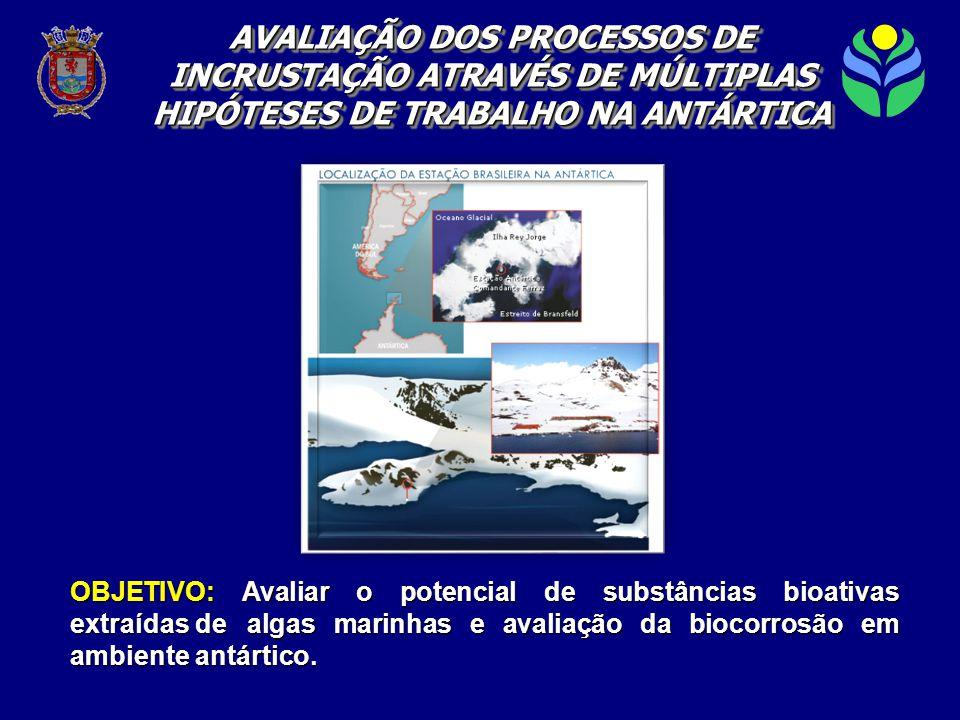 OBJETIVO: Avaliar o potencial de substâncias bioativas extraídas de algas marinhas e avaliação da biocorrosão em ambiente antártico.