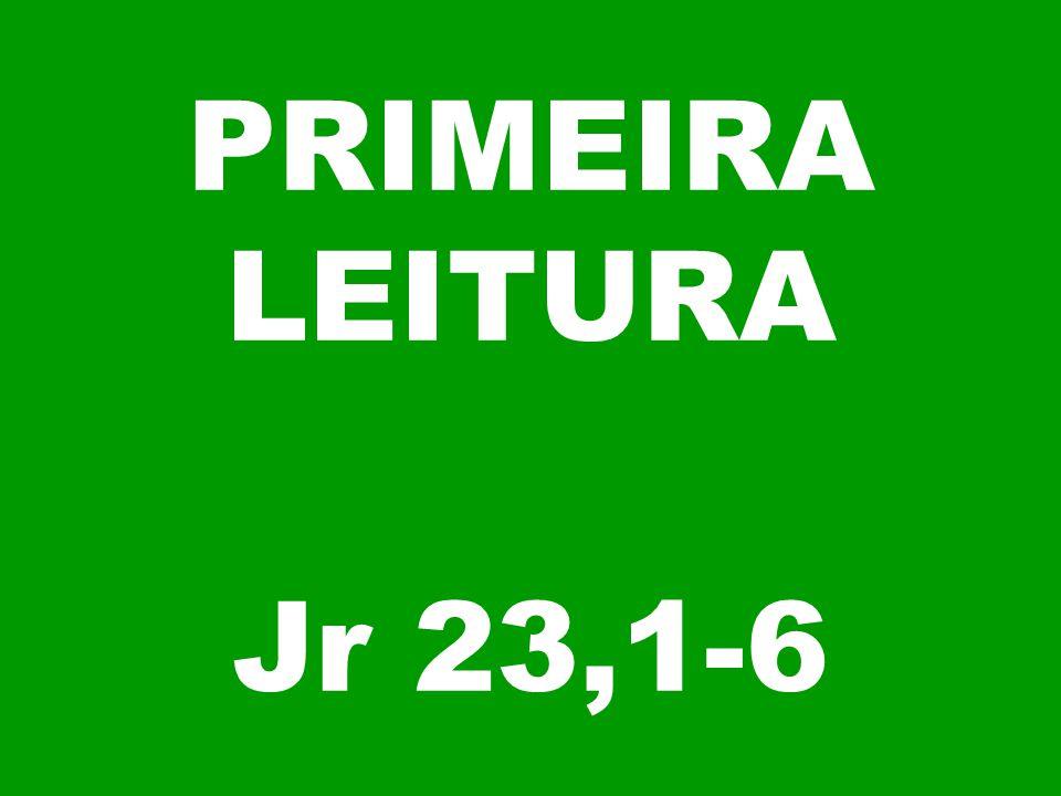 PRIMEIRA LEITURA Jr 23,1-6