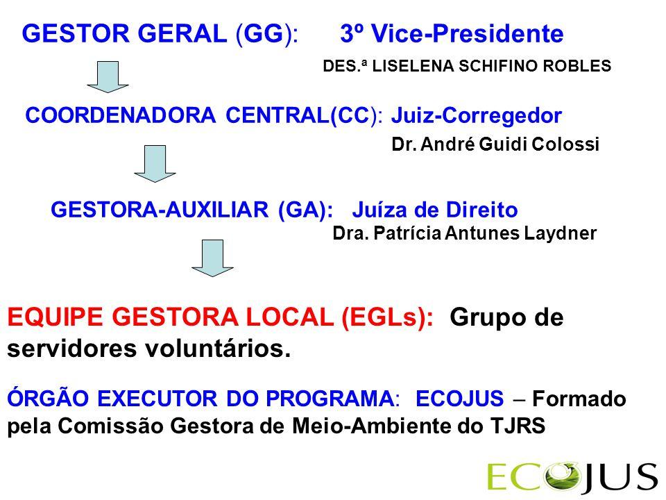 GESTOR GERAL (GG): 3º Vice-Presidente COORDENADORA CENTRAL(CC): Juiz-Corregedor DES.ª LISELENA SCHIFINO ROBLES GESTORA-AUXILIAR (GA): Juíza de Direito