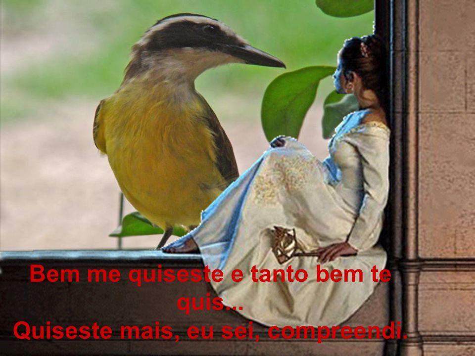 É que aquele passarinho na janela Lembrou-me o dia que há muito já perdi...