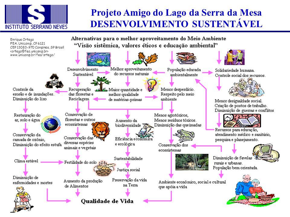 Projeto Amigo do Lago da Serra da Mesa DESENVOLVIMENTO SUSTENTÁVEL Enrique Ortega FEA, Unicamp, CP 6121 CEP 13083-970 Campinas, SP Brasil www.unicamp.