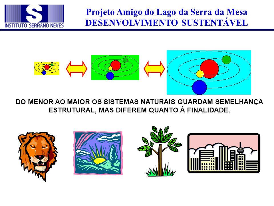 Projeto Amigo do Lago da Serra da Mesa DESENVOLVIMENTO SUSTENTÁVEL DO MENOR AO MAIOR OS SISTEMAS NATURAIS GUARDAM SEMELHANÇA ESTRUTURAL, MAS DIFEREM Q