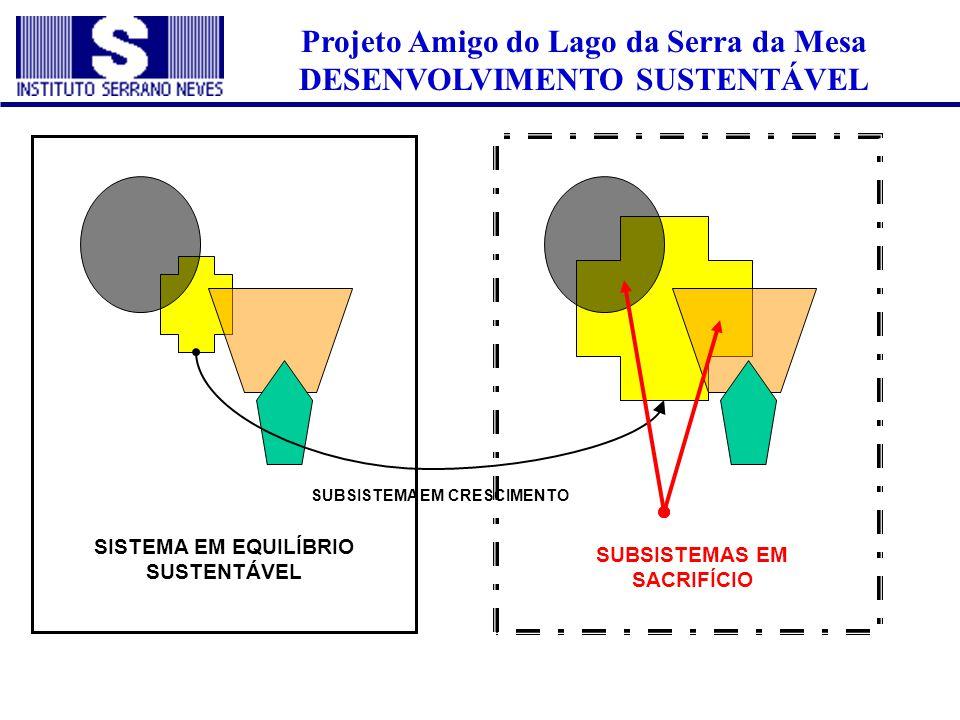 Projeto Amigo do Lago da Serra da Mesa DESENVOLVIMENTO SUSTENTÁVEL SISTEMA EM EQUILÍBRIO SUSTENTÁVEL SUBSISTEMA EM CRESCIMENTO SUBSISTEMAS EM SACRIFÍC