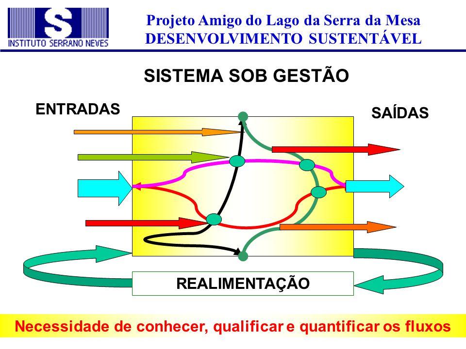 Projeto Amigo do Lago da Serra da Mesa DESENVOLVIMENTO SUSTENTÁVEL ENTRADAS SAÍDAS REALIMENTAÇÃO SISTEMA SOB GESTÃO Necessidade de conhecer, qualifica