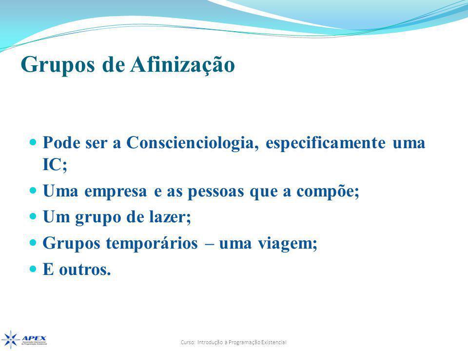 Curso: Introdução à Programação Existencial  Pode ser a Conscienciologia, especificamente uma IC;  Uma empresa e as pessoas que a compõe;  Um grupo