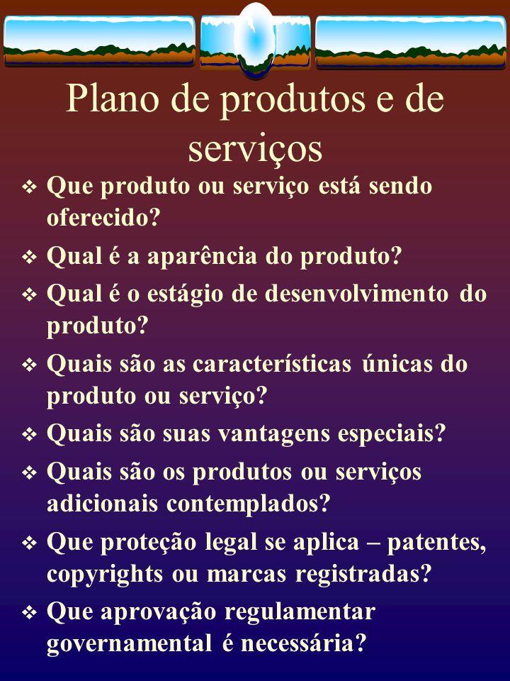 Plano de produtos e de serviços  Que produto ou serviço está sendo oferecido?  Qual é a aparência do produto?  Qual é o estágio de desenvolvimento
