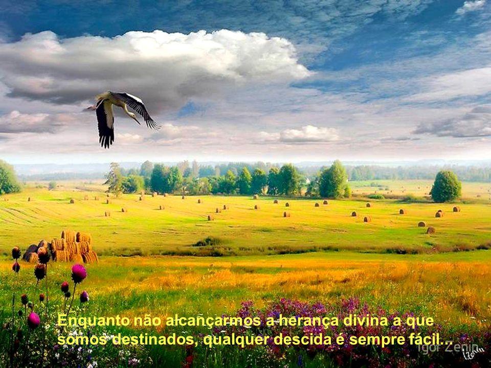 Todas as forças imponderáveis da experiência humana como que se conjugam contra aquele que deseja avançar no roteiro do bem.