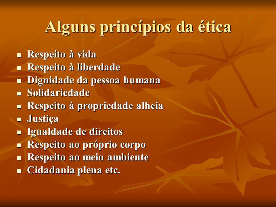 Alguns princípios da ética  Respeito à vida  Respeito à liberdade  Dignidade da pessoa humana  Solidariedade  Respeito à propriedade alheia  Jus