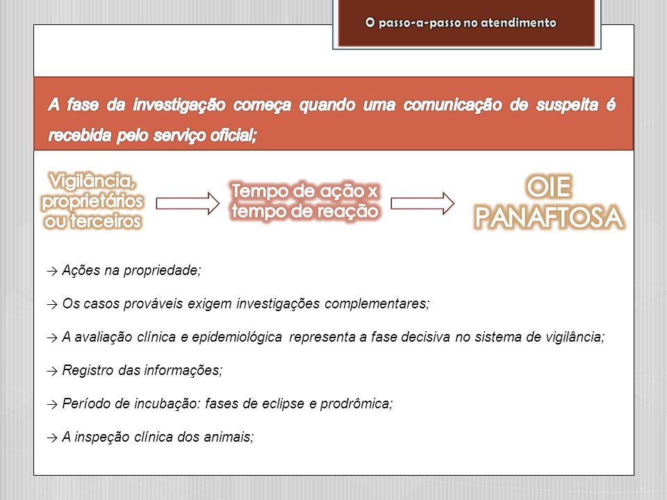 → Ações na propriedade; → Os casos prováveis exigem investigações complementares; → A avaliação clínica e epidemiológica representa a fase decisiva no
