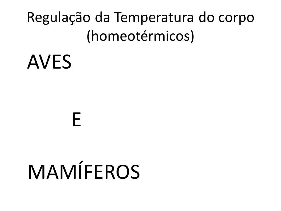 Regulação da Temperatura do corpo (homeotérmicos) AVES E MAMÍFEROS