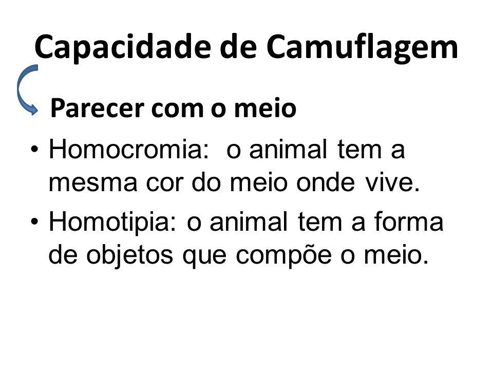 Capacidade de Camuflagem Parecer com o meio •Homocromia: o animal tem a mesma cor do meio onde vive. •Homotipia: o animal tem a forma de objetos que c