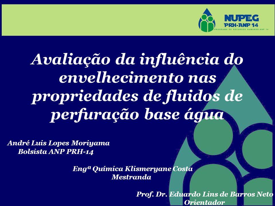 Avaliação da influência do envelhecimento nas propriedades de fluidos de perfuração base água André Luis Lopes Moriyama Bolsista ANP PRH-14 Engª Quími