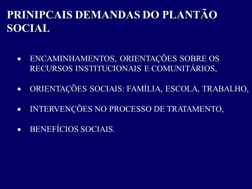 PRINIPCAIS DEMANDAS DO PLANTÃO SOCIAL  ENCAMINHAMENTOS, ORIENTAÇÕES SOBRE OS RECURSOS INSTITUCIONAIS E COMUNITÁRIOS,  ORIENTAÇÕES SOCIAIS: FAMÍLIA,
