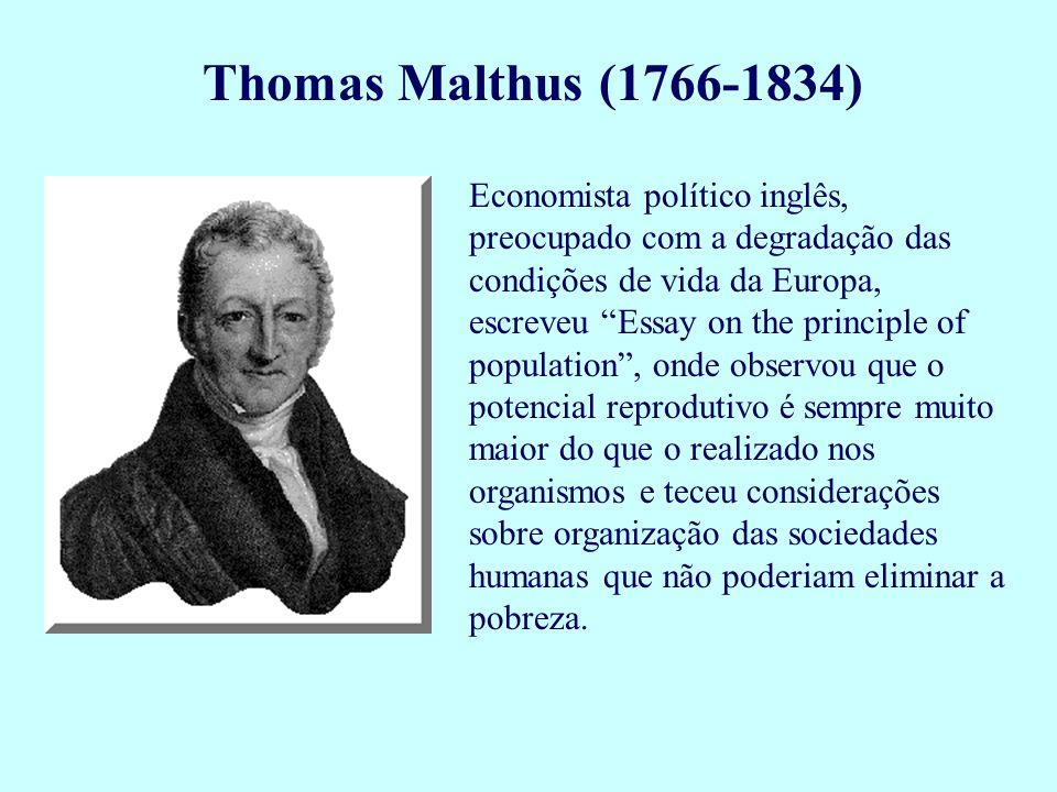 """Thomas Malthus (1766-1834) Economista político inglês, preocupado com a degradação das condições de vida da Europa, escreveu """"Essay on the principle o"""