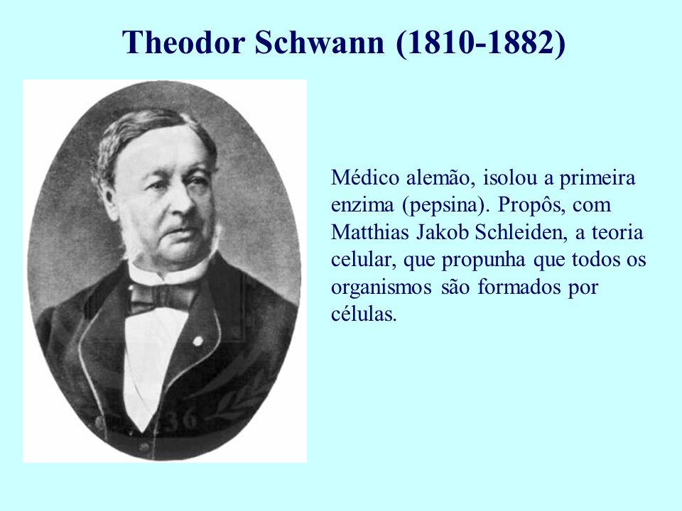 Theodor Schwann (1810-1882) Médico alemão, isolou a primeira enzima (pepsina). Propôs, com Matthias Jakob Schleiden, a teoria celular, que propunha qu