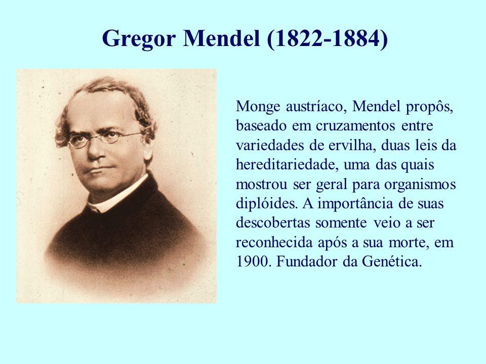 Gregor Mendel (1822-1884) Monge austríaco, Mendel propôs, baseado em cruzamentos entre variedades de ervilha, duas leis da hereditariedade, uma das qu