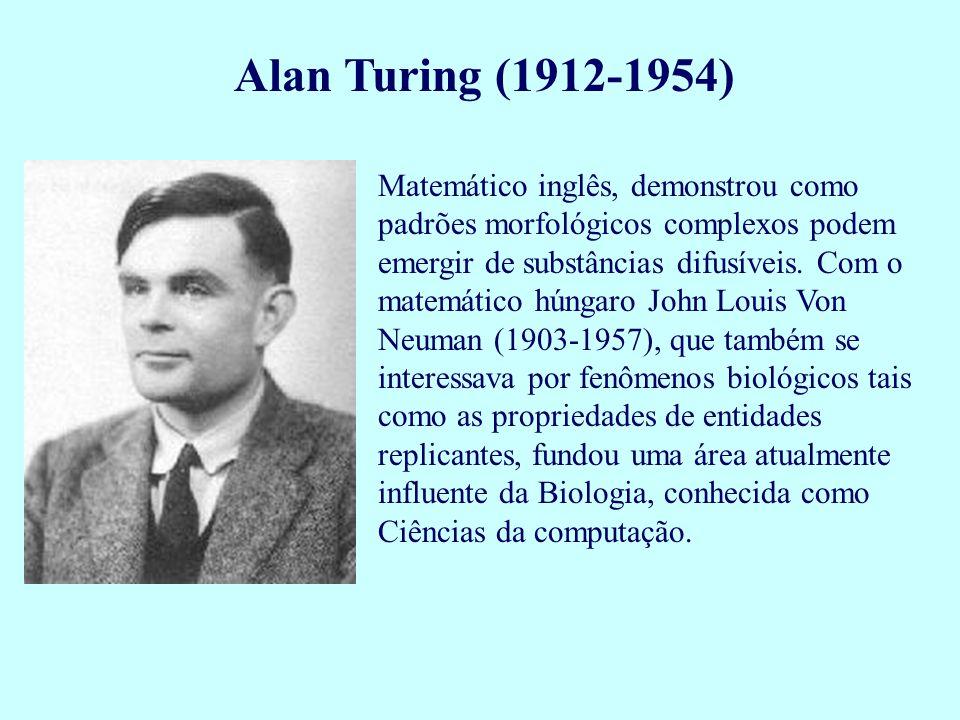 Alan Turing (1912-1954) Matemático inglês, demonstrou como padrões morfológicos complexos podem emergir de substâncias difusíveis. Com o matemático hú