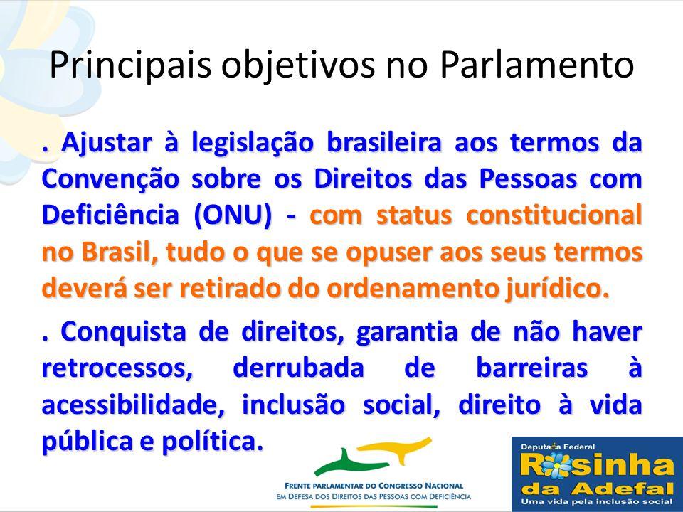 Principais objetivos no Parlamento. Ajustar à legislação brasileira aos termos da Convenção sobre os Direitos das Pessoas com Deficiência (ONU) - com