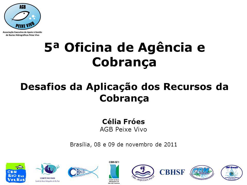 5ª Oficina de Agência e Cobrança Desafios da Aplicação dos Recursos da Cobrança Célia Fróes AGB Peixe Vivo Brasília, 08 e 09 de novembro de 2011
