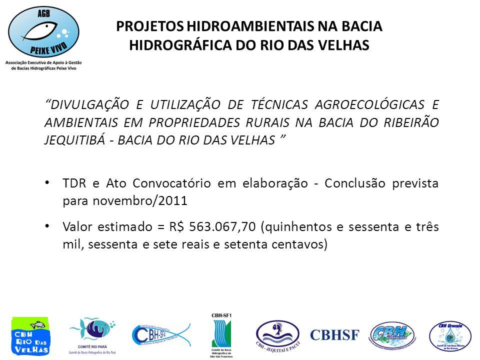DIVULGAÇÃO E UTILIZAÇÃO DE TÉCNICAS AGROECOLÓGICAS E AMBIENTAIS EM PROPRIEDADES RURAIS NA BACIA DO RIBEIRÃO JEQUITIBÁ - BACIA DO RIO DAS VELHAS • TDR e Ato Convocatório em elaboração - Conclusão prevista para novembro/2011 • Valor estimado = R$ 563.067,70 (quinhentos e sessenta e três mil, sessenta e sete reais e setenta centavos) PROJETOS HIDROAMBIENTAIS NA BACIA HIDROGRÁFICA DO RIO DAS VELHAS