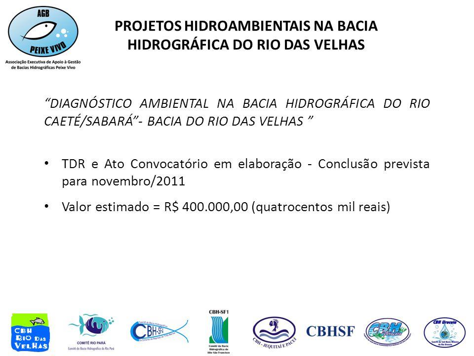 DIAGNÓSTICO AMBIENTAL NA BACIA HIDROGRÁFICA DO RIO CAETÉ/SABARÁ - BACIA DO RIO DAS VELHAS • TDR e Ato Convocatório em elaboração - Conclusão prevista para novembro/2011 • Valor estimado = R$ 400.000,00 (quatrocentos mil reais) PROJETOS HIDROAMBIENTAIS NA BACIA HIDROGRÁFICA DO RIO DAS VELHAS