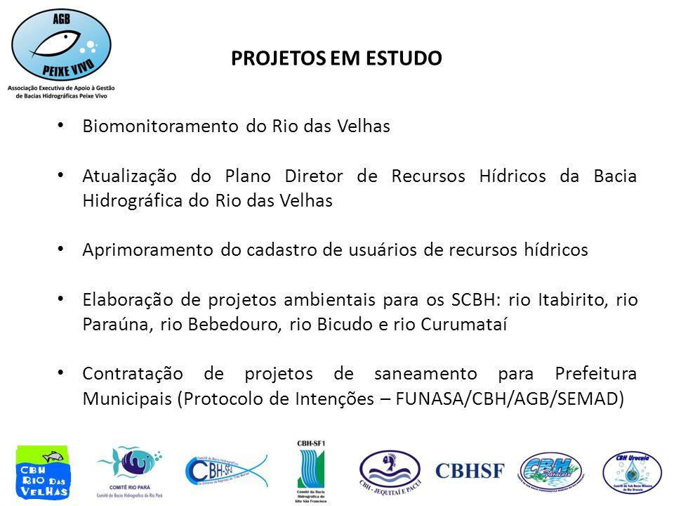 • Biomonitoramento do Rio das Velhas • Atualização do Plano Diretor de Recursos Hídricos da Bacia Hidrográfica do Rio das Velhas • Aprimoramento do cadastro de usuários de recursos hídricos • Elaboração de projetos ambientais para os SCBH: rio Itabirito, rio Paraúna, rio Bebedouro, rio Bicudo e rio Curumataí • Contratação de projetos de saneamento para Prefeitura Municipais (Protocolo de Intenções – FUNASA/CBH/AGB/SEMAD) PROJETOS EM ESTUDO