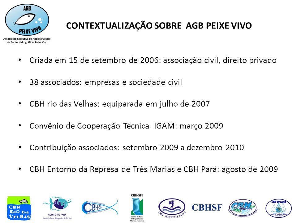 CONTEXTUALIZAÇÃO SOBRE AGB PEIXE VIVO • Criada em 15 de setembro de 2006: associação civil, direito privado • 38 associados: empresas e sociedade civi