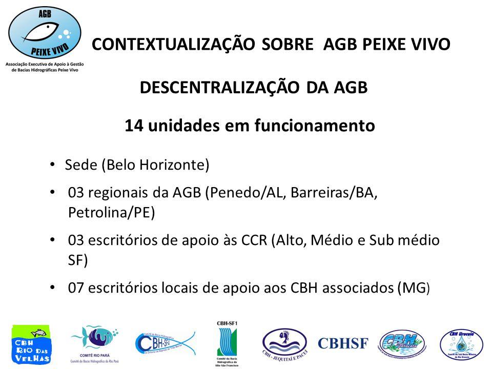 DESCENTRALIZAÇÃO DA AGB 14 unidades em funcionamento • Sede (Belo Horizonte) • 03 regionais da AGB (Penedo/AL, Barreiras/BA, Petrolina/PE) • 03 escritórios de apoio às CCR (Alto, Médio e Sub médio SF) • 07 escritórios locais de apoio aos CBH associados (MG ) CONTEXTUALIZAÇÃO SOBRE AGB PEIXE VIVO