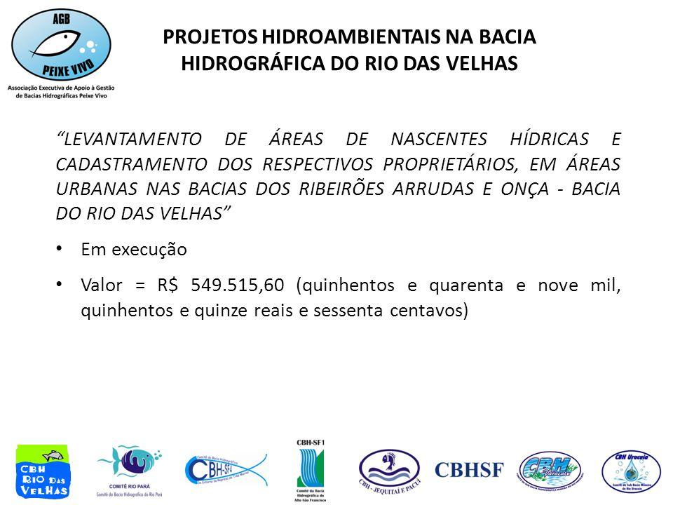 PROJETOS HIDROAMBIENTAIS NA BACIA HIDROGRÁFICA DO RIO DAS VELHAS LEVANTAMENTO DE ÁREAS DE NASCENTES HÍDRICAS E CADASTRAMENTO DOS RESPECTIVOS PROPRIETÁRIOS, EM ÁREAS URBANAS NAS BACIAS DOS RIBEIRÕES ARRUDAS E ONÇA - BACIA DO RIO DAS VELHAS • Em execução • Valor = R$ 549.515,60 (quinhentos e quarenta e nove mil, quinhentos e quinze reais e sessenta centavos)