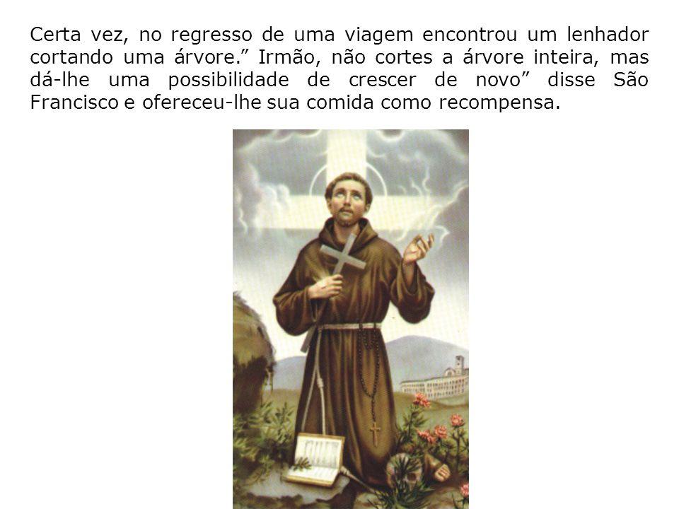 Para São Francisco de Assis, Deus era o pai de todos, de modo que não podia deixar de sentir-se irmão de todas as coisas criadas, de animais e plantas