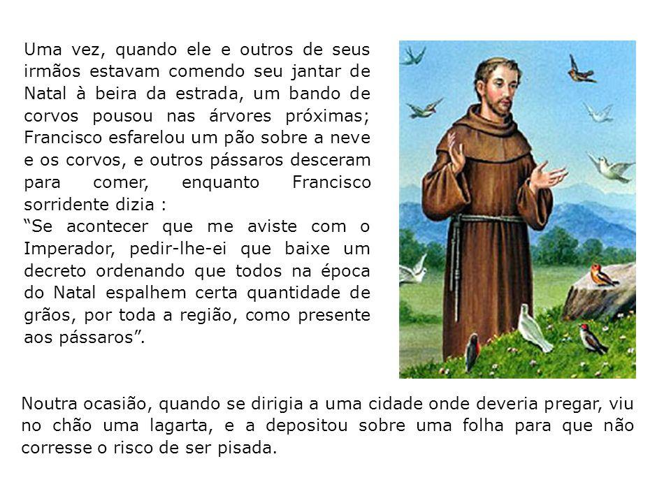 Outra vez, viu uma lebre apanhada numa ratoeira e correu a ajudar a irmã Lebre a se libertar. Em Siena ajudou as pombas a construir seus ninhos e cert