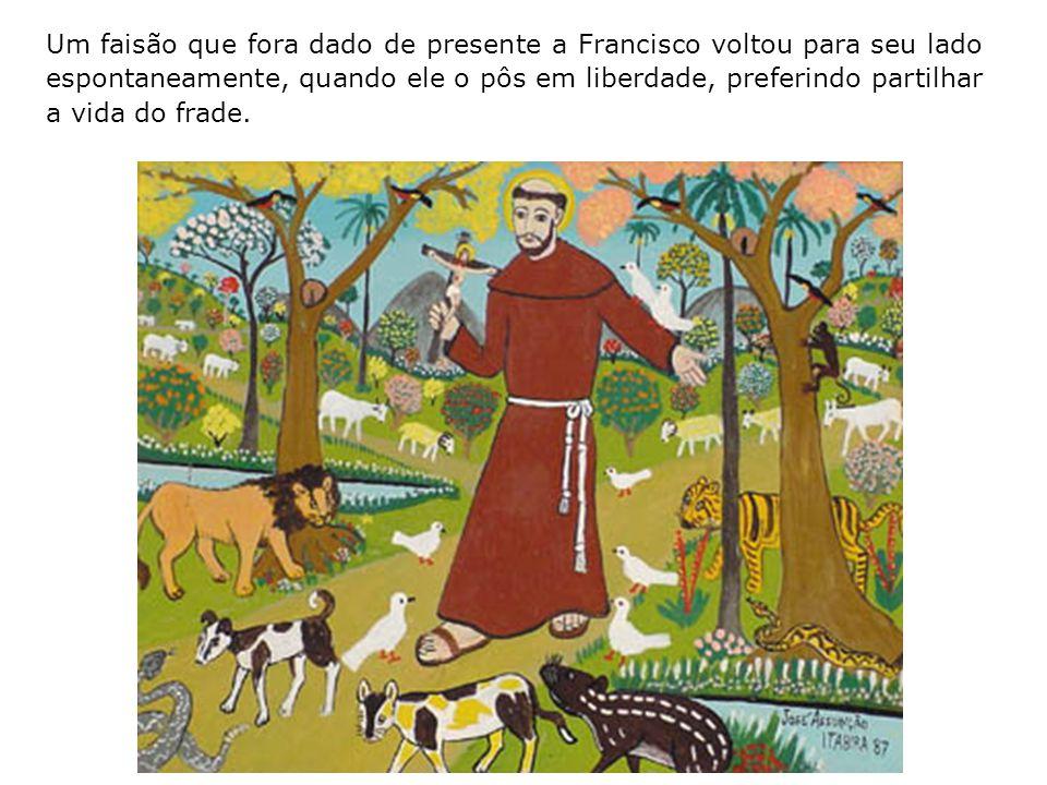 Um faisão que fora dado de presente a Francisco voltou para seu lado espontaneamente, quando ele o pôs em liberdade, preferindo partilhar a vida do frade.