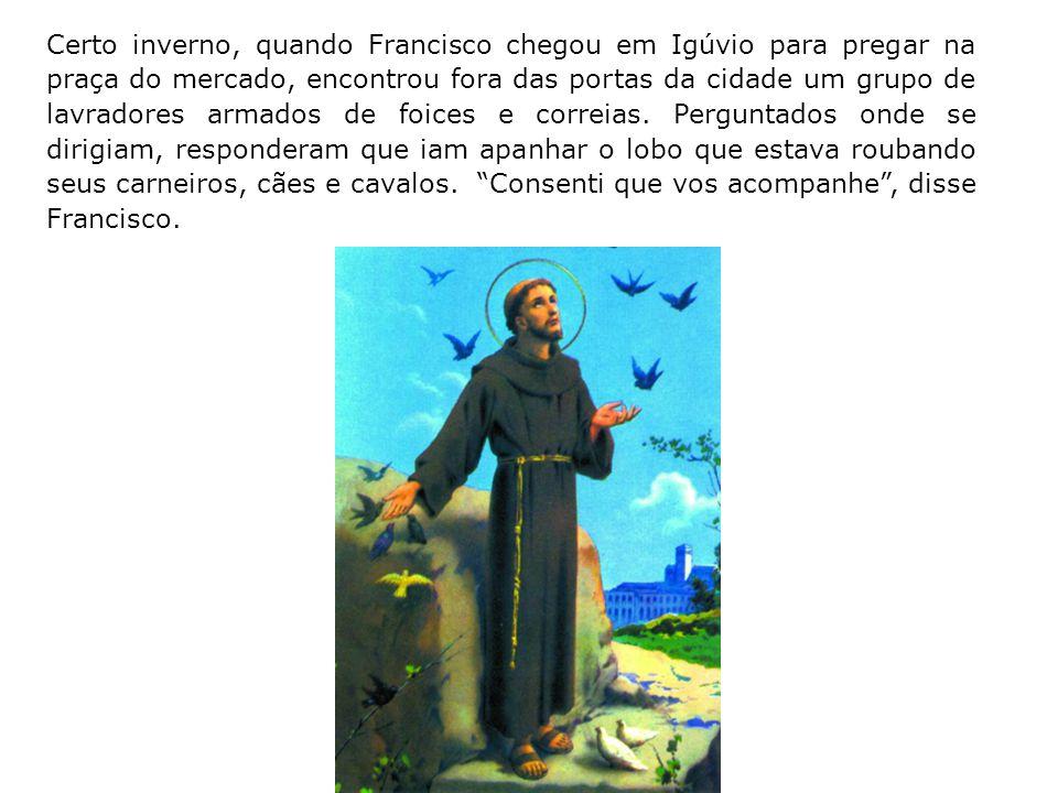 Um faisão que fora dado de presente a Francisco voltou para seu lado espontaneamente, quando ele o pôs em liberdade, preferindo partilhar a vida do fr