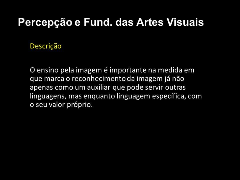 Compreensão estética • Nível I Percepção e Fund. das Artes Visuais