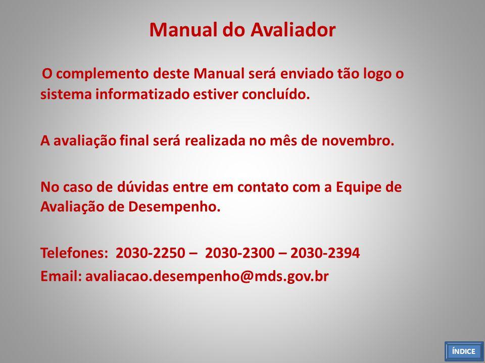 Manual do Avaliador O complemento deste Manual será enviado tão logo o sistema informatizado estiver concluído. A avaliação final será realizada no mê