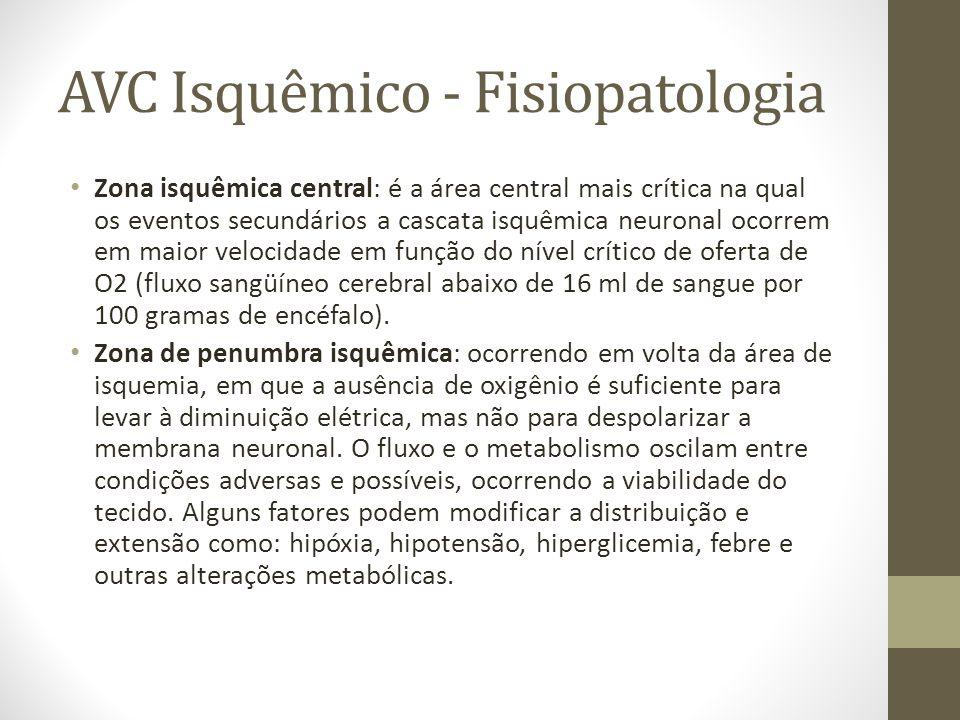 • Zona isquêmica central: é a área central mais crítica na qual os eventos secundários a cascata isquêmica neuronal ocorrem em maior velocidade em fun