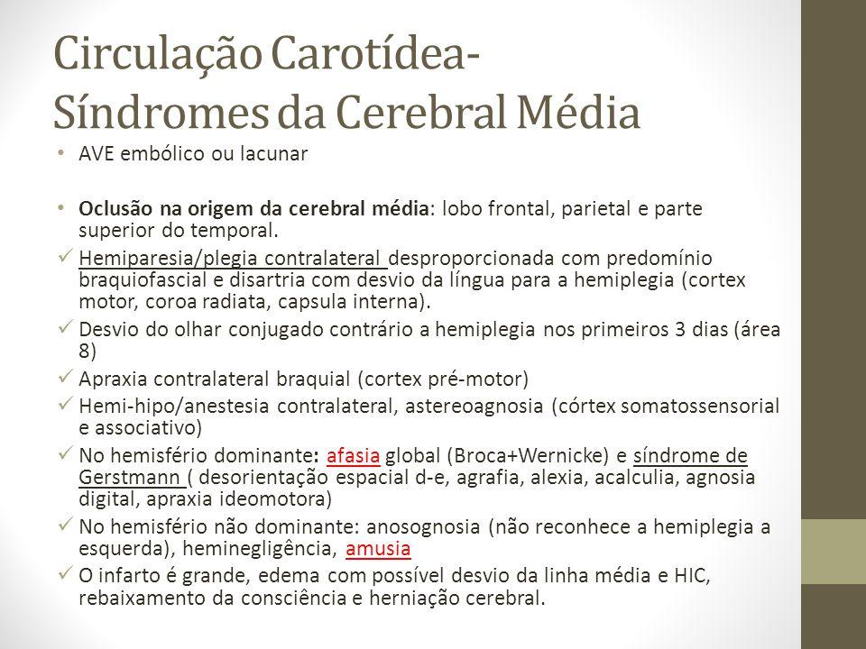 Circulação Carotídea- Síndromes da Cerebral Média • AVE embólico ou lacunar • Oclusão na origem da cerebral média: lobo frontal, parietal e parte superior do temporal.