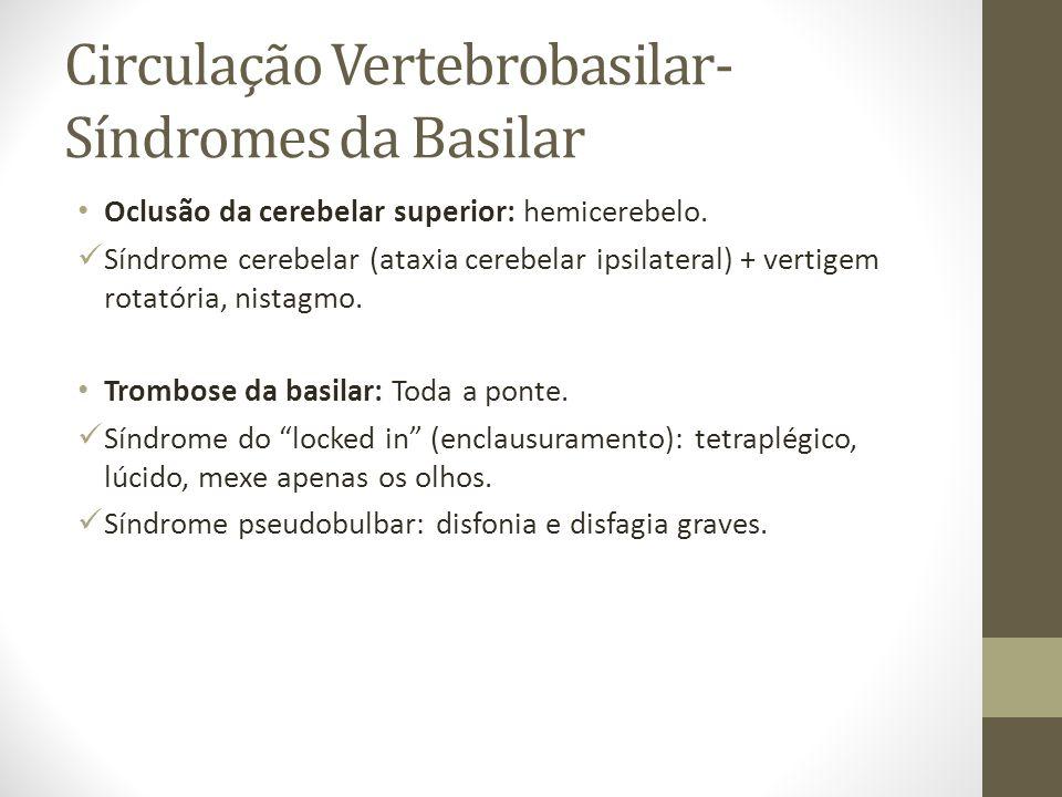 Circulação Vertebrobasilar- Síndromes da Basilar • Oclusão da cerebelar superior: hemicerebelo.  Síndrome cerebelar (ataxia cerebelar ipsilateral) +