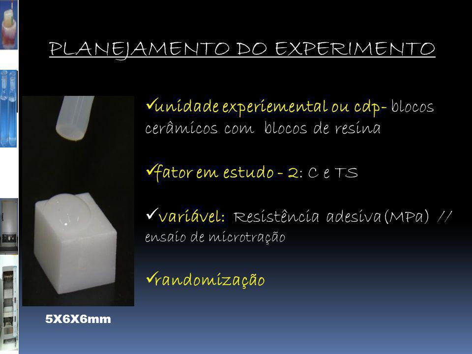 PLANEJAMENTO DO EXPERIMENTO  unidade experiemental ou cdp- blocos cerâmicos com blocos de resina  fator em estudo - 2: C e TS  variável: Resistênci