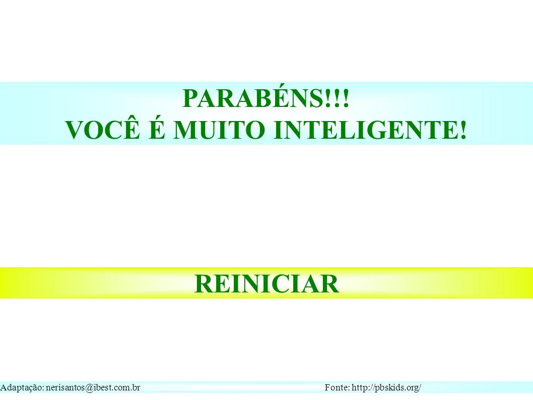 Adaptação: nerisantos@ibest.com.br Fonte: http://pbskids.org/ REINICIAR PARABÉNS!!.