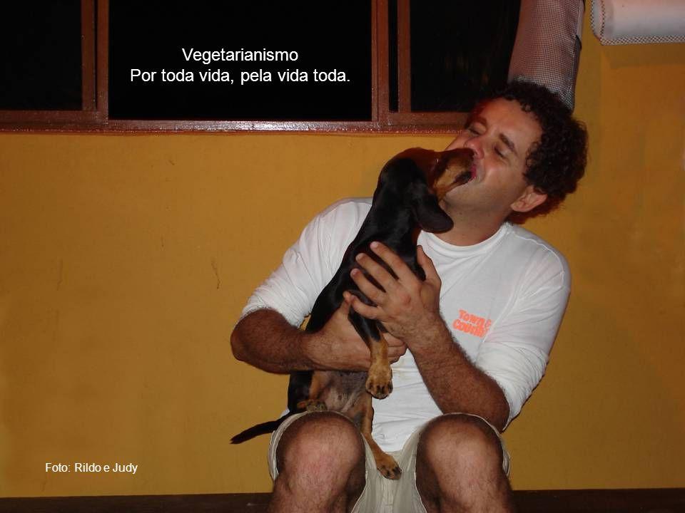 Foto: Rildo Silveira Gaturama Vegetarianismo: Viva e deixe viver.