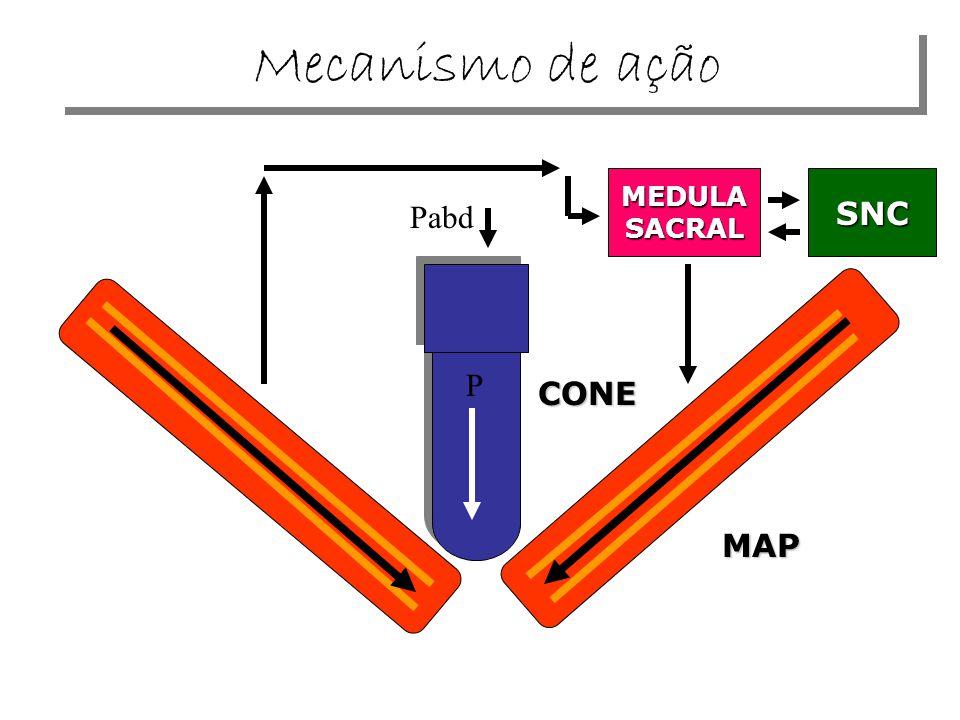 CONE P MEDULASACRALSNC MAP Pabd Mecanismo de ação