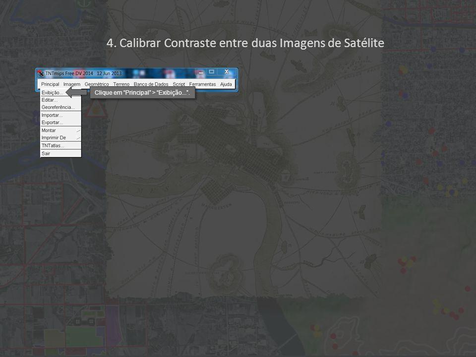 """Clique em """"Principal"""" > """"Exibição..."""". 4. Calibrar Contraste entre duas Imagens de Satélite"""