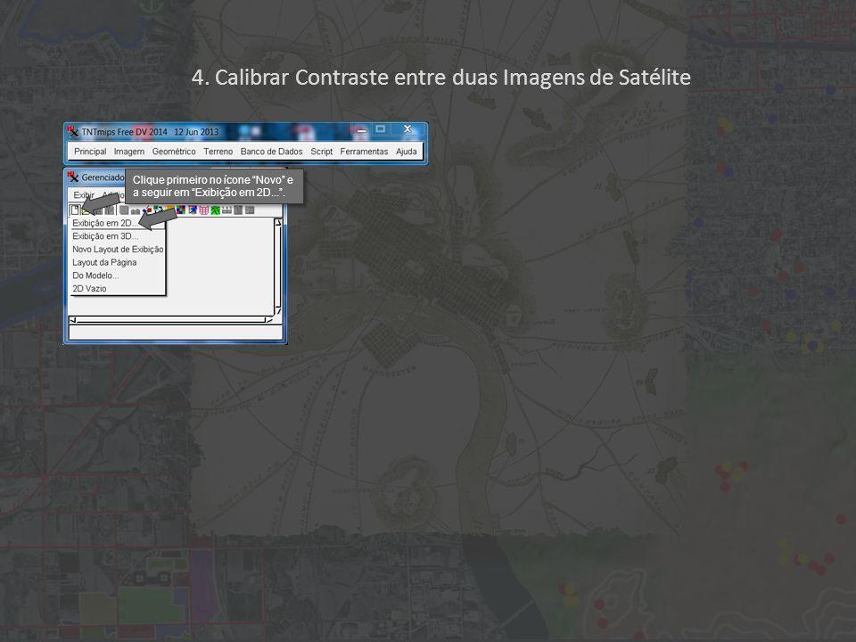 """Clique primeiro no ícone """"Novo"""" e a seguir em """"Exibição em 2D..."""". 4. Calibrar Contraste entre duas Imagens de Satélite"""