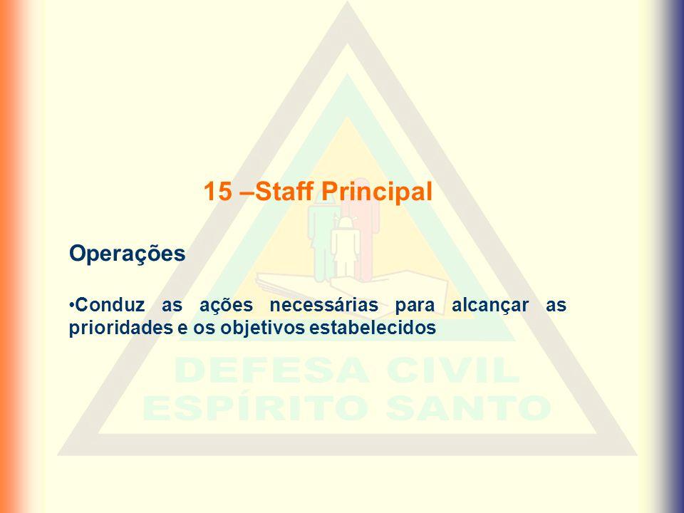 15 –Staff Principal Operações •Conduz as ações necessárias para alcançar as prioridades e os objetivos estabelecidos