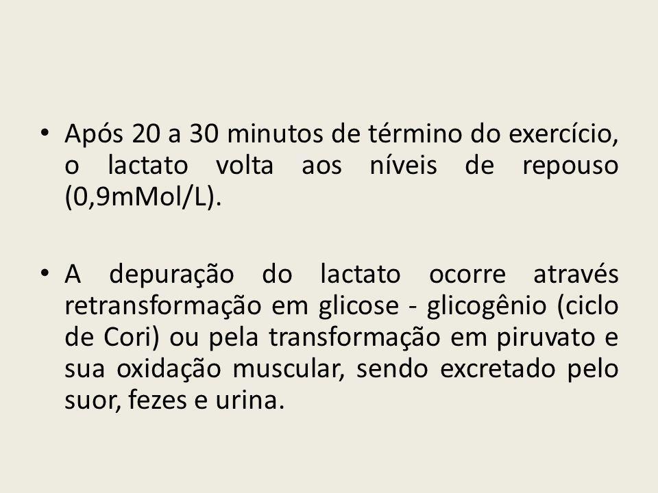 • Após 20 a 30 minutos de término do exercício, o lactato volta aos níveis de repouso (0,9mMol/L). • A depuração do lactato ocorre através retransform