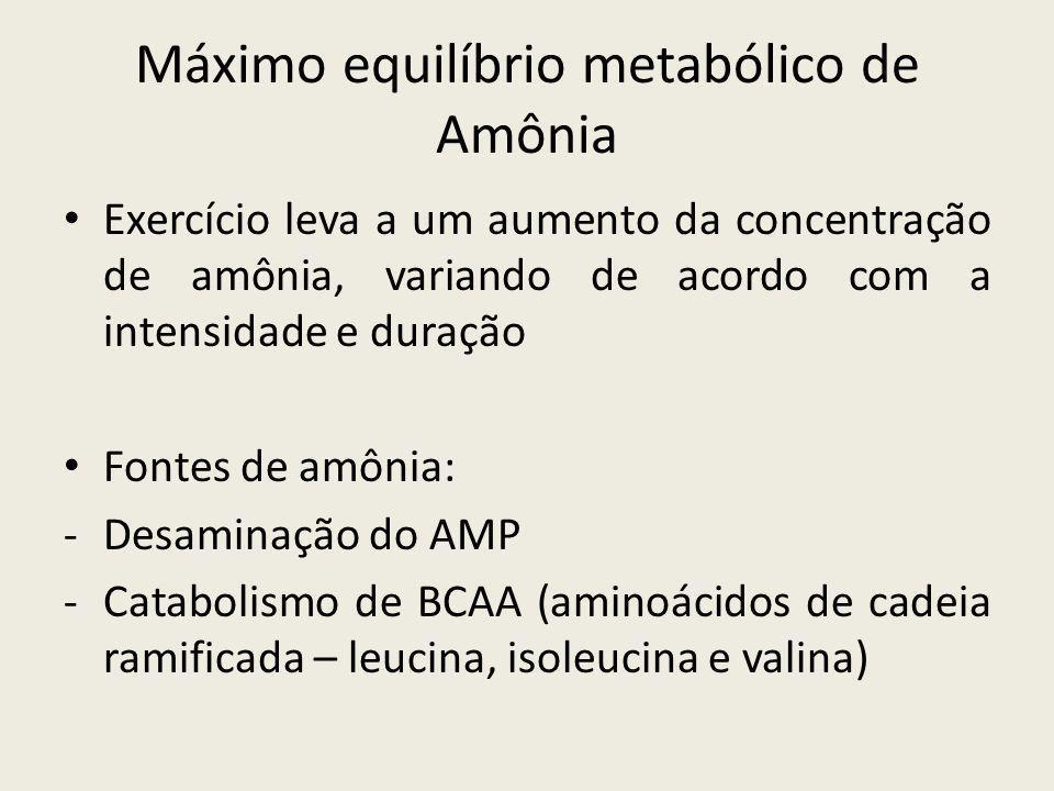 • Exercício leva a um aumento da concentração de amônia, variando de acordo com a intensidade e duração • Fontes de amônia: -Desaminação do AMP -Catab